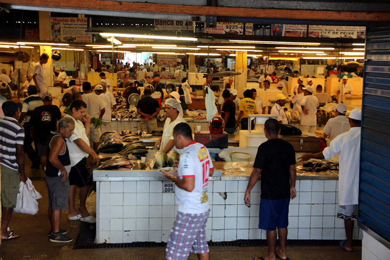 Fischmarkt in Manaus