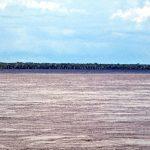 Zusammenfluss Rio Negro - Rio Branco